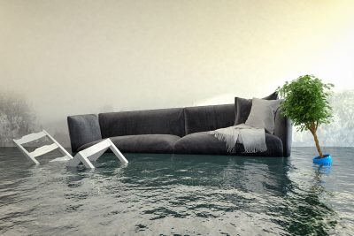 Couch, chair, and houseplant half-submerged in water